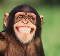 smilingchimp
